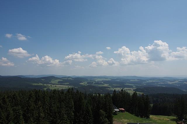 Z vyhlídky na Stezce korunami stromů lze vidět Lipenské jezero, šumavskou přírodu a za dobrého počasí i vrcholky rakouských Alp.