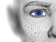 Biometrická identifikace osob za chůze